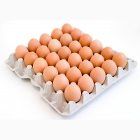 Продам Яйця Курячі ОПТ