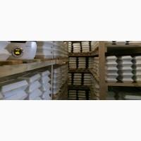Мальок равлика (малек улитки) Helix Aspersa Muller Маточне стадо ікра