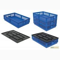 Ящики для перевозки суточных цыплят
