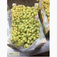 Цитрусовые, гранат и др. фрукты Турция