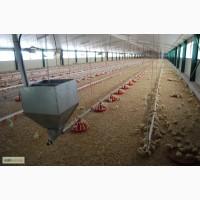 Продам оборудование для напольного выращивания бройлеров