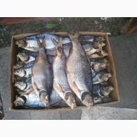 Продам вяленую рыбу
