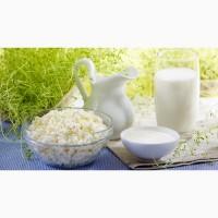Закупка от производителя молочных продуктов