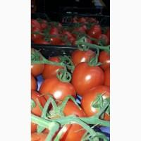 Томаты и овощи из Испании