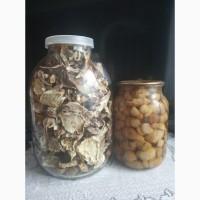 Продам сухі та мариновані білі гриби