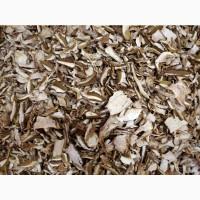 Сушені білі гриби із Закарпаття 2020 білі 1 сорт ціни вказані за 1 кг