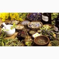 Куплю лекарственные травы, корни, листья, цветы