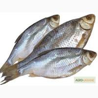 Рыба сушеная очень вкусная