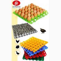 Пластиковый лоток для куриных яиц, лотки для яиц, лоток для гусиных яиц