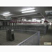 Інвентарь для свино-комплексу Із Данії