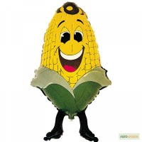 Куплю кукурудзу з повишеною вологою (з поля)