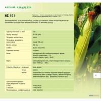 Продам посадковий матеріал кукурудзи НС-101 м.Нові Сад (Сербія)