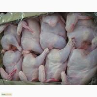 Продам курятину (халяль)