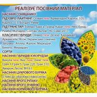 НК «ГРАН» реалізує високоякісне насіння гібридів СОНЯШНИКУ, КУКУРУДЗИ, ЦУКРОВОГО БУРЯКУ