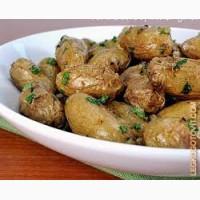 Продам картофель оптом в количестве от 5 тонн