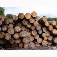 Реализуем дрова твердой породи ВЯЗ 2000 м3, доставка
