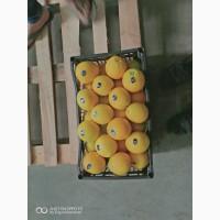 Продам апельсин (Египет)