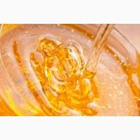 Закупаем мёд без антибиотика