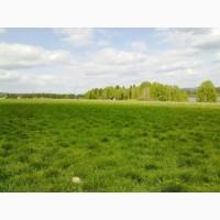 Земельный участок 0, 5939 га. продажа земли