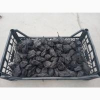 Продам сушені груші і сливи