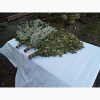 Веники банные: березовый, дубовый, липовый, эвкалиптовый