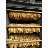 Продам табак Турецкий, Золоте руно, Дюбек, Вирджиния