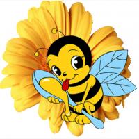 Продам пчелопакети Карпатскои пчелы