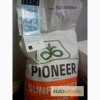 Подсолнечник семена Пионер ПР64Е71