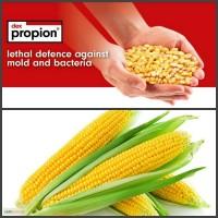 Продам средства защиты растений оптом и розницу