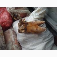 Путовый сустав говяжий