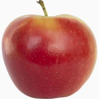 Фруктосховище під ключ Камера зберігання яблук, груш