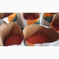 Гибрид Кукурузы ВН 6763(ФАО 320)
